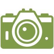 Figura Verde Acessório Fotográfica
