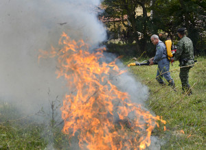 Na prática, participantes enfrentaram o calor para conter as chamas de um foco controlado